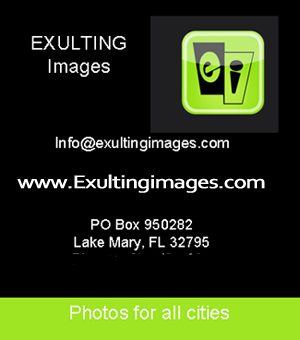 exulting_photo_box
